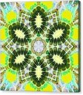 Painted Cymatics 181.66hz Acrylic Print