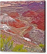 Painted Desert From Rim Trail In Petrified Forest National Park-arizona Acrylic Print