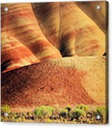 Painted Hills And Grassland Acrylic Print