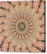 Painted Kaleidoscope 1 Acrylic Print