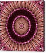 Painted Kaleidoscope 14 Acrylic Print