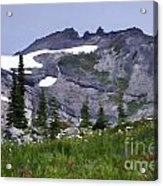 Painted Landscape Acrylic Print