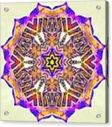 Painted Lotus Xiv Acrylic Print