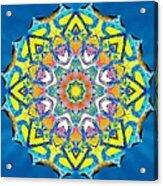 Painted Lotus Xv Acrylic Print