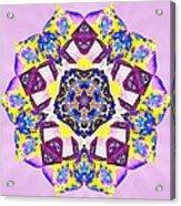 Painted Lotus Xvi Acrylic Print