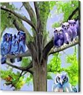 Painting Of Owls And Birds Nest In Tree Acrylic Print
