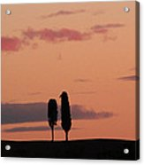 Pair Of Cypress Trees And Morning Sky In Tuscany Acrylic Print