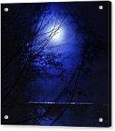 Pale Moon Acrylic Print