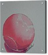 Pale Pink Acrylic Print
