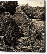 Palenque From The Jungle Panorama Sepia Acrylic Print