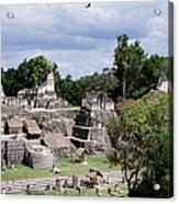 Palenque Ruins Acrylic Print