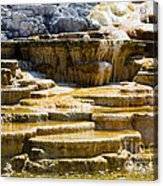 Palette Spring 2 Yellowstone National Park Wy Acrylic Print