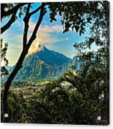Pali Lookout For Puu Alii Acrylic Print