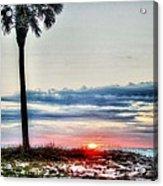 Palm And Sun Acrylic Print