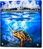 Palm Beach Under And Over Acrylic Print