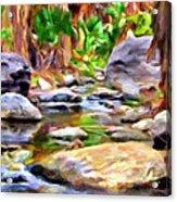 Palm Canyon Trail Acrylic Print