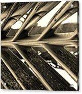 Palms E Sepia Acrylic Print