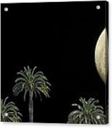Palm Moon Acrylic Print