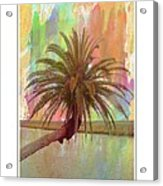 Palm On The Loop Acrylic Print