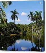 Palm Reflection And Shadow Acrylic Print
