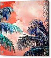 Palmscape Red Acrylic Print