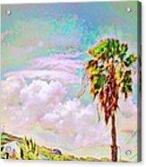 Palm Tree Against Pastel Sky - Square Acrylic Print