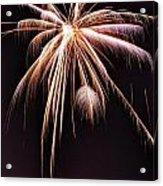 Palm Tree Fireworks Acrylic Print