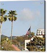 Palm Tree Flag Acrylic Print