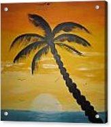 Palm Tree Acrylic Print by Haleema Nuredeen