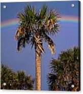 Palm Tree Rainbow Acrylic Print