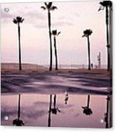 Palm Tree Reflections Acrylic Print