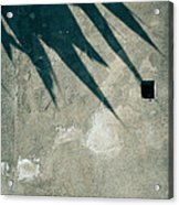 Palm Tree Shadow On Wall With Holes Acrylic Print