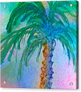 Palm Tree Study Acrylic Print