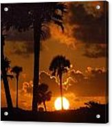 Palm Tree Sunrise In Gulf Shores Acrylic Print