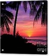 Palm Tree Sunset In Paradise Acrylic Print