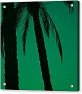 Palm Trees And Emerald Sky. Acrylic Print