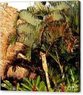 Palm Trees At Sunset Acrylic Print
