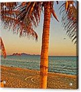 Palm Trees By A Restaurant On The Beach In Bahia Kino-sonora-mexico Acrylic Print