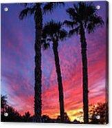 Palm Trees Sunset Acrylic Print