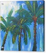 Palm Trio Acrylic Print