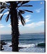 Palm Waves Acrylic Print