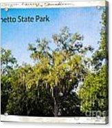 Palmetto State Park Acrylic Print