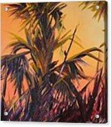 Palmettos At Dusk Acrylic Print