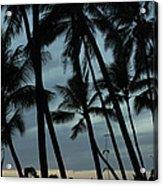 Palms At Dusk Acrylic Print