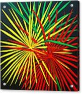 Palms Bursting Acrylic Print by Roseann Gilmore