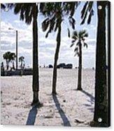 Palms Acrylic Print