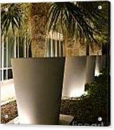 Palms In Pots Acrylic Print