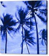 Palms In Storm Wind-bora Bora Tahiti Acrylic Print