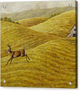 Palouse Farm Whitetail Deer Acrylic Print by Crista Forest