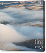 Palouse Morning Mist Acrylic Print